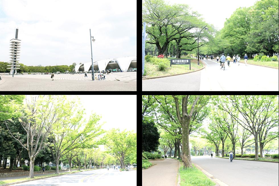 駒沢大学駅周辺情報2